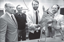 Examining a Grant's Gazelle at the N.C. Zoo | March 5, 1985. L-R. Dr. Terrence M. Curtin, Dean, Veterinary Medicine, NCSU; Robert L. Fry, North Carolina Zoological Park Director; Dr. Michael Loomis, Zoo Veterinarian, North Carolina Zoological Park and School of Veterinary Medicine, NCSU; Stephen W. Crane, School of Veterinary Medicine, NCSU. Photo courtesy of Asheboro Courier-Tribune.