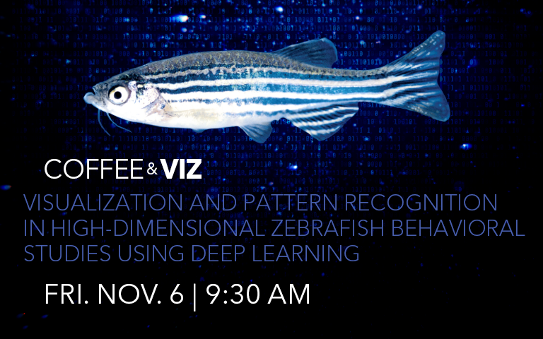 Coffee & Viz: Visualization and Pattern Recognition in High-Dimensional Zebrafish Behavioral Studies using Deep Learning