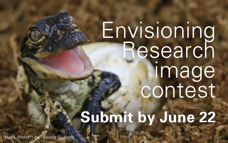 Envisioning Research Image Content, Submit by June 22