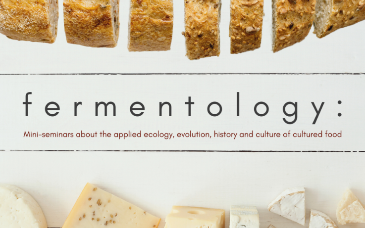 Fermentology Mini-Seminars about the applied ecology, evolution, history and culture of cultured food