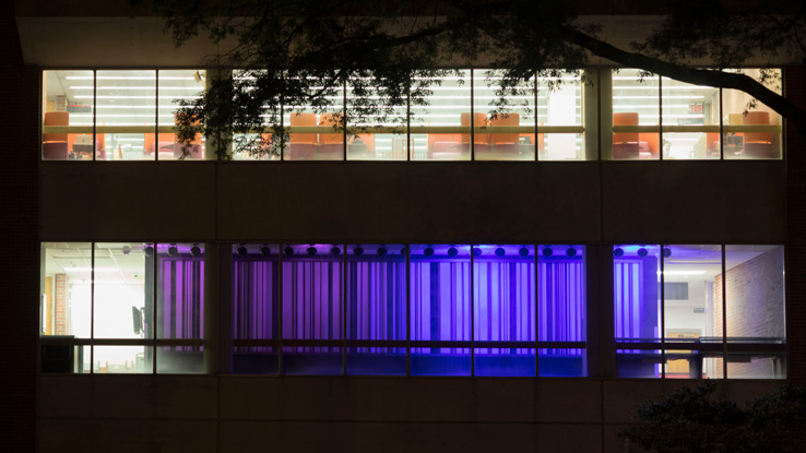 Hill Library Color Wall relit to honor late director