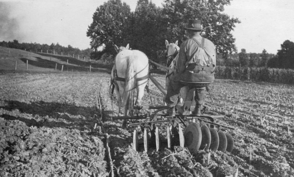Tilling on the NC State college farm, ca. 1915