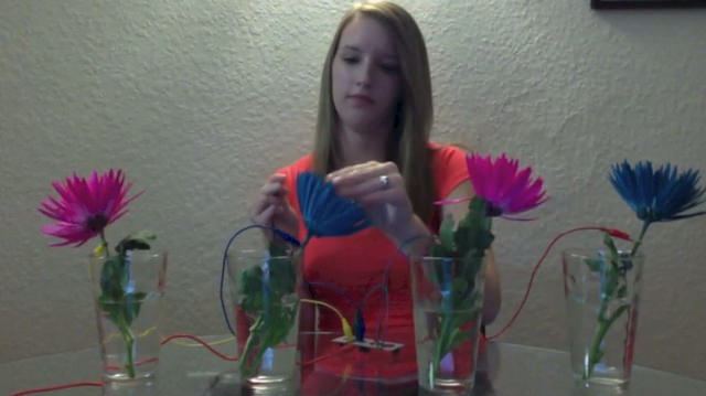 NCSU student's makey-makey flower piano project