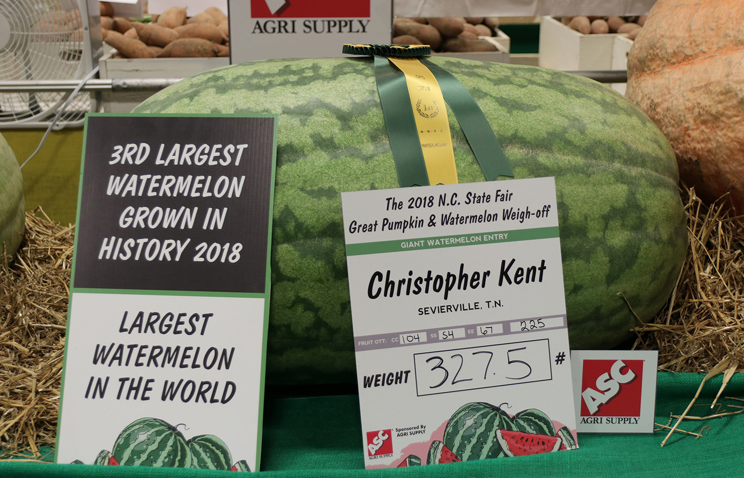 Third largest watermelon grown at the 2018 NC State Fair