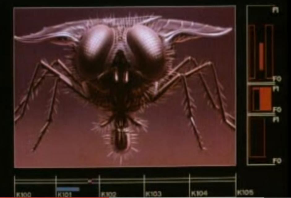 Still from The Fly