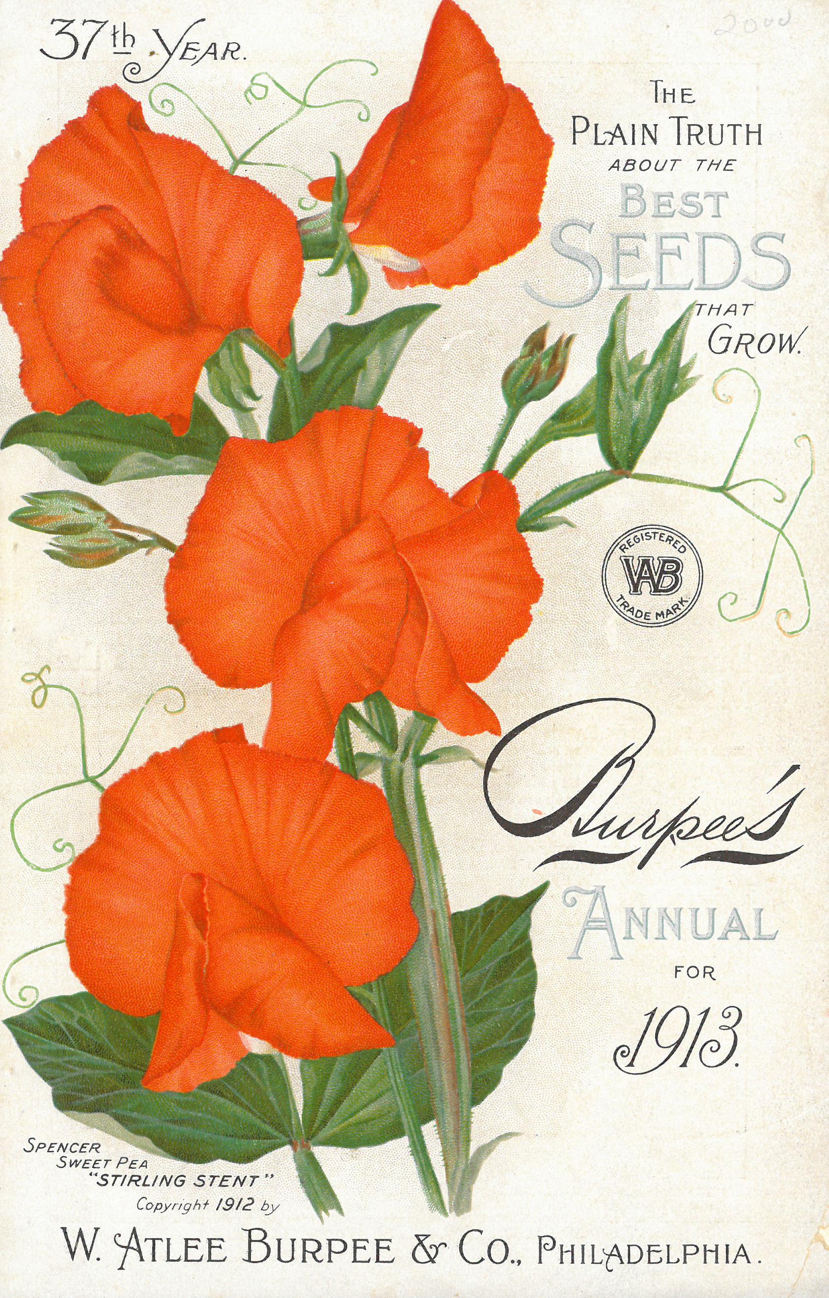 Burpee seed catalog, 1913
