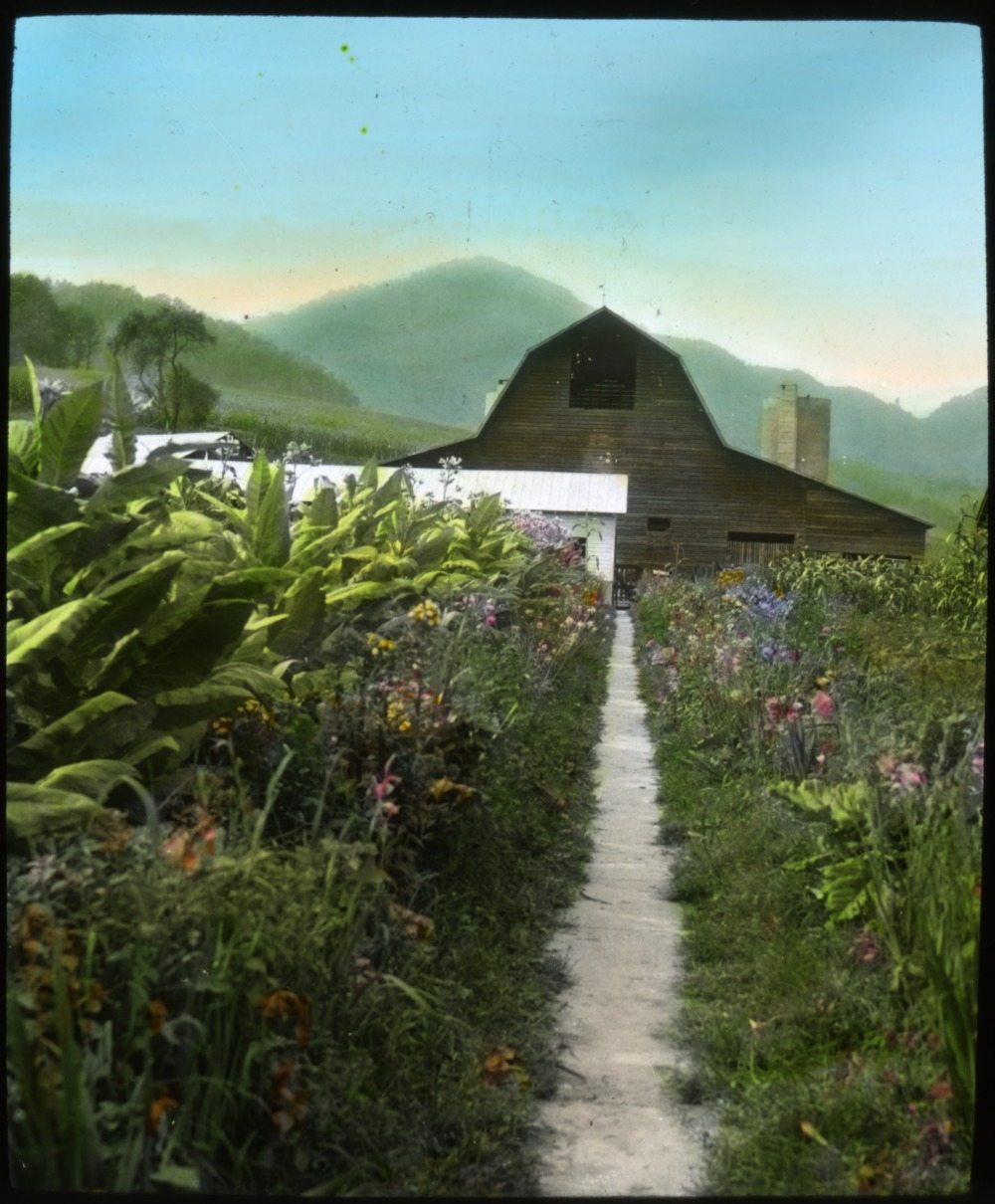 """Barn, fields and a row of flowers with mountains in the background"""