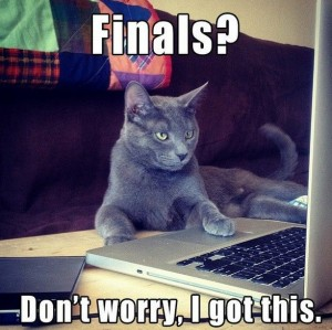 "A cat in front of a computer says, ""Finals? Don't Worry, I got this."""