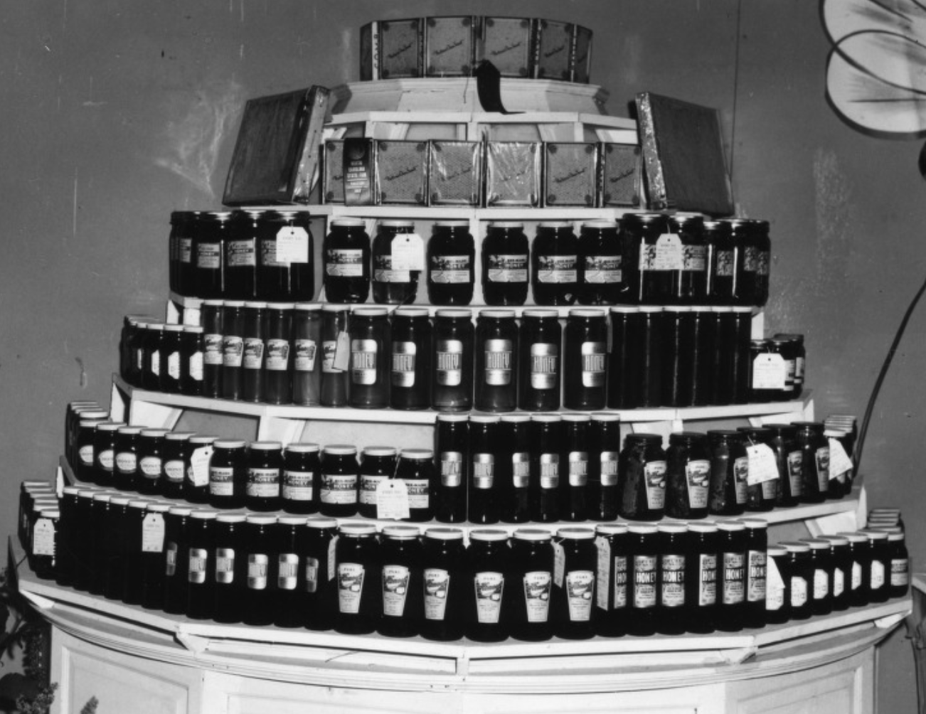 Honey exhibit at NC State Fair, ca. 1950