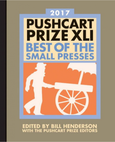 The Pushcart Prize: Best of the Small Presses 2017 book cover.