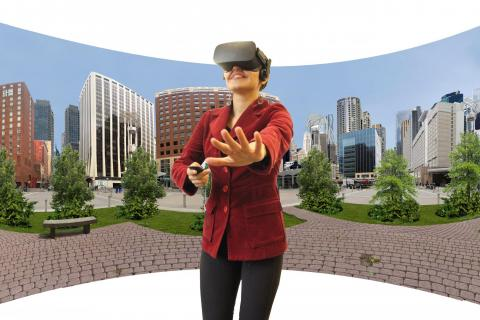 Immersive Virtual Environment