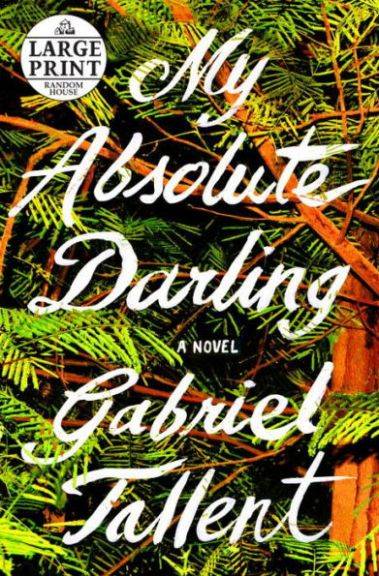 My Absolute Darling book cover.