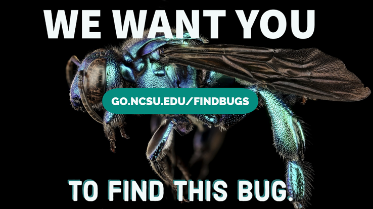 There are bugs everywhere whether you like it or not. Now you can get the official campus bug count at the Wolfpack Citizen Science Challenge wrap-up event.