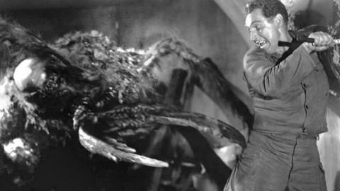 "A still from the 1954 ""Them!"" American monster film"