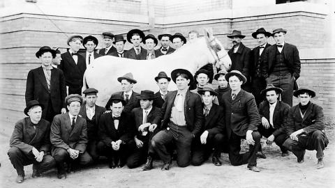 NCSU Animal Science Students (1927), from Agricultural Extension and Research Services Photographs (UA 023.007)