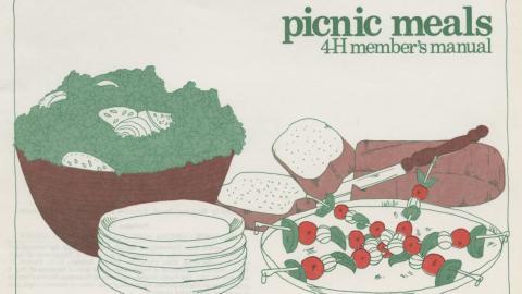 Picnic Meals, 4-H Club Manual, 1983
