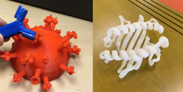 STEM Build 3D-printed models