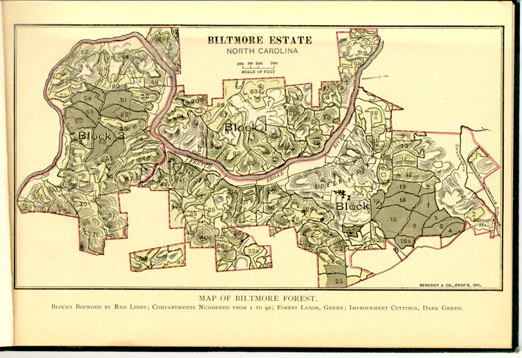 MAP OF BILTMORE FOREST.